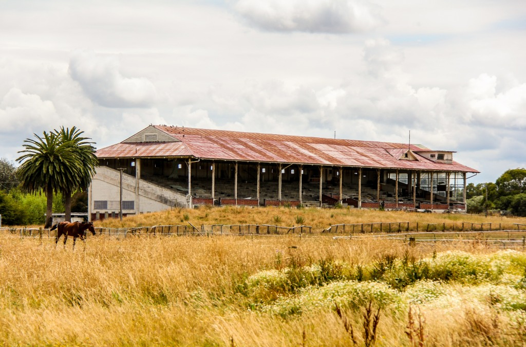 Marton Racecourse grandstand. The crowds moved out in 1980. Maybe nearby Palmerston North was more exciting.