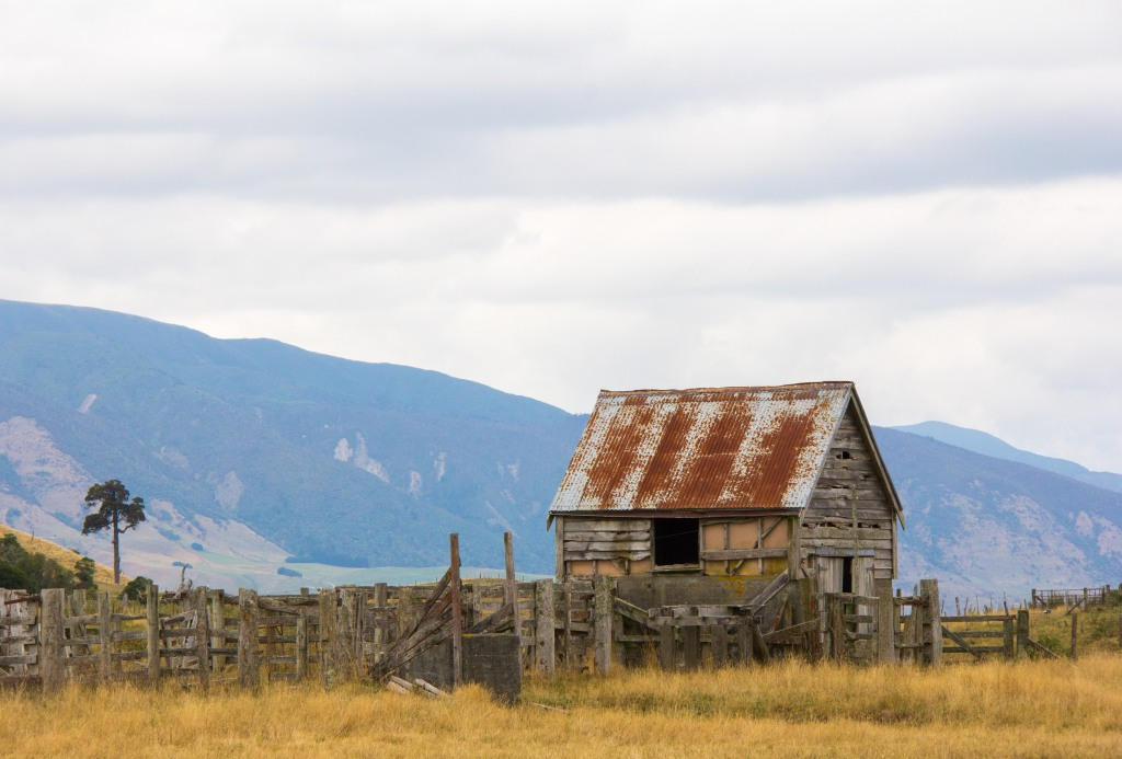 Who doesn't like a photo of an old derelict shed in the middle of nowhere?