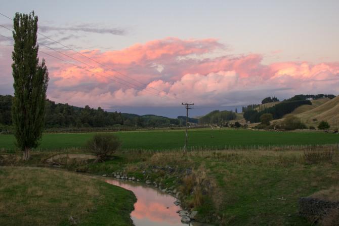 Looking north, towards Hunterville.