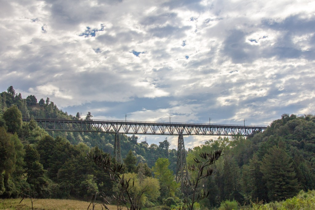 The Makohine Viaduct. For a while it was the tallest viaduct in New Zealand at 73 metres high and 228 metres long. It's no longer the highest viaduct in New Zealand but it is still high.