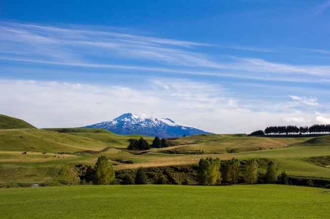 Mt Ruapehu, about 10,000 metres. Live Volcano. Right there behind that farm.