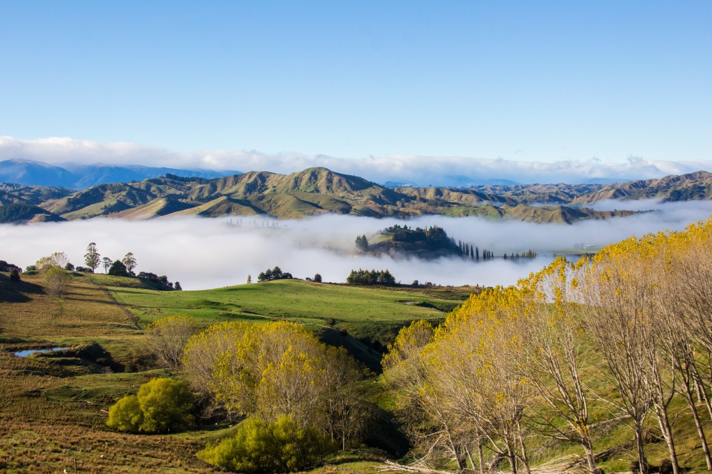 The Rangitikei Valley at 8am. It's cool to look down on the clouds