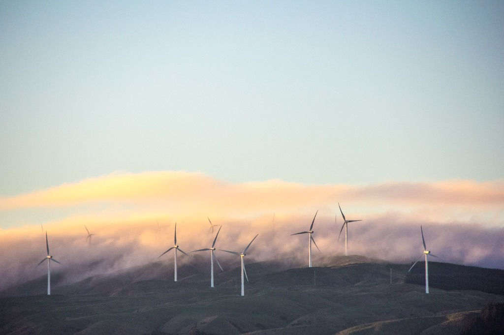 The Te Apiti Wind Farm early morning. I'm sure there are all sorts of interesting facts about the Te Apiti Wind Farm.