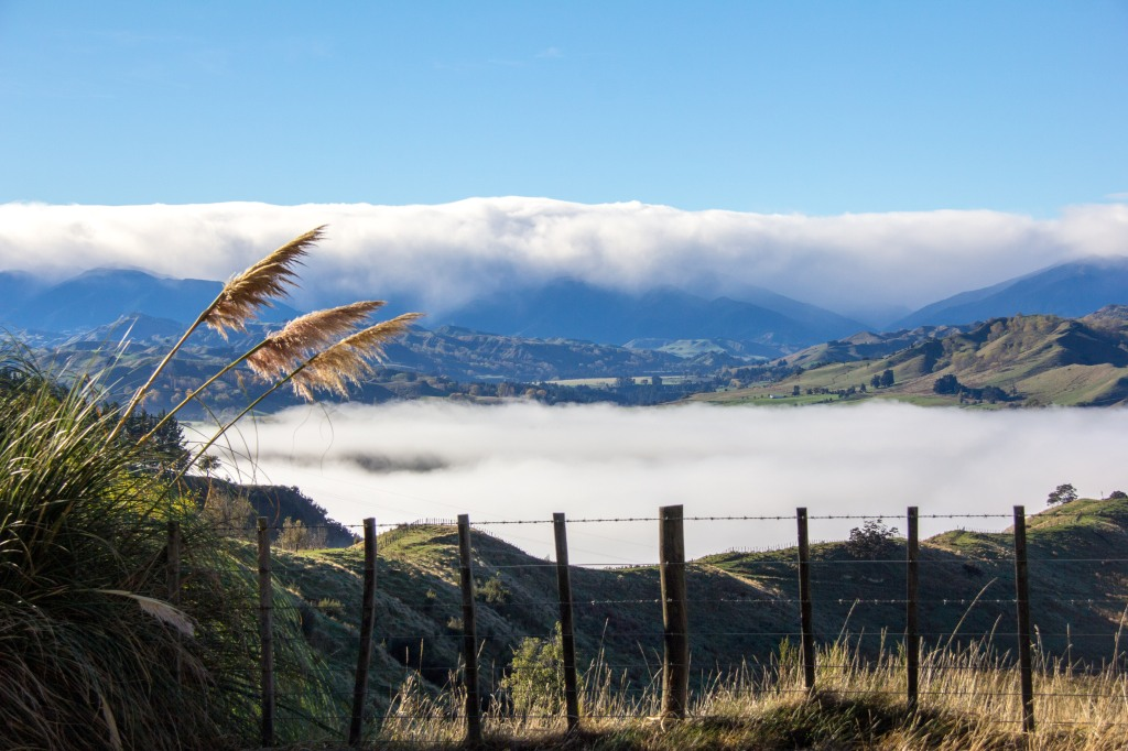 Rangitikei river valley, full of fog, love this stuff. There's a river down there, I expect it has something to do with the valley hugging foggy clouds.