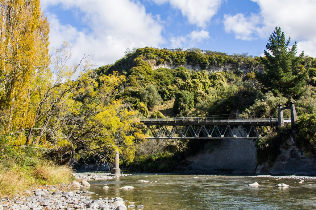 Rangitikei River, near Utiku, looks calm enough now, you should have seen it a few weeks ago, washing away bridges it was. Not this bridge though.
