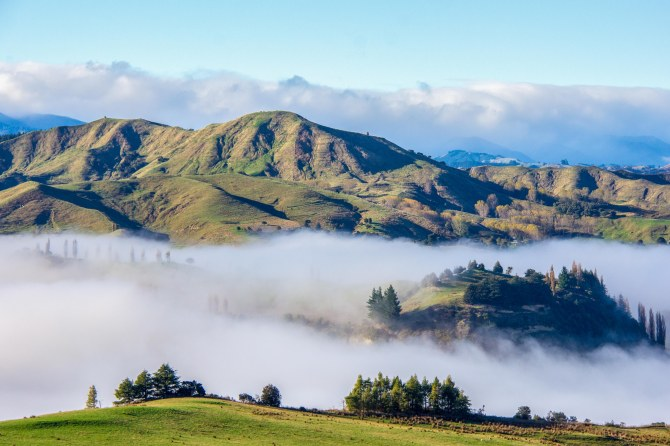 Low cloud, early morning in the Rangitikei River Valley. Makes for a cool island in the cloud
