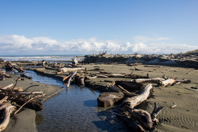 Driftwood beside the outlet to the sea at Himatangi. It's all free, help yourself.