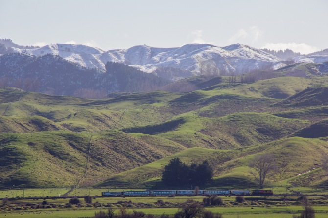 That's the Kiwi Rail Northern Explorer, passing through the Rangitikei. The only passenger train that runs between Auckland and Wellington. It runs each way, every second day. We aren't really a nation of train travellers.
