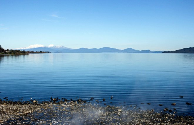 Lake with a Volvcano underneath. This is Lake Taupo, a 616 square kilometre crater for one of the largest Super Volcanoes in the world. True story. This Volcano goes up, you can expect flight delays, for the rest of time.