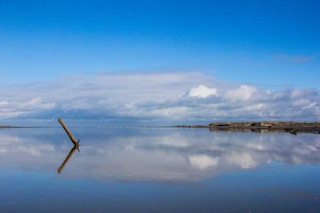 If you showed this photo to someone and said this was the Mouth of the Manawatu River at Foxton, they wouldn't believe you. Go on, try it, ask someone.