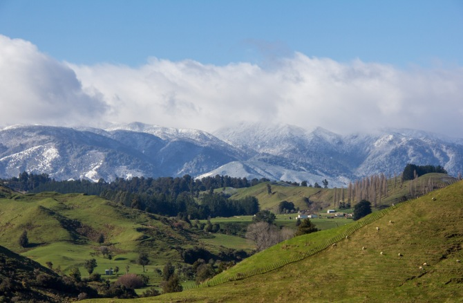 The Ruahine Ranges looming large over a fetching piece of farm land. Manawatu High country. There is high country in the Manawatu contrary to popular opinion.