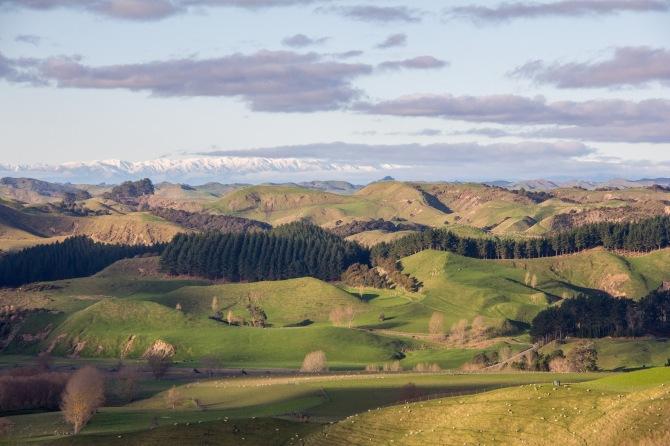 Rangitikei landscape. Lot's of it.
