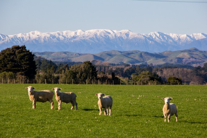 Look! It's New Zealand, all of it in one photograph. Putorino Road, hardly anyone will know where that is but every one who has driven from Taihape to Bulls has driven past it.
