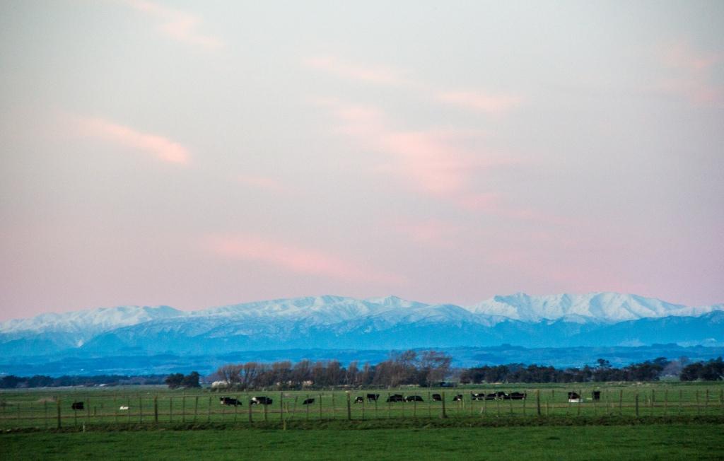 Blue Mountains, pink hues, cool dusk tones