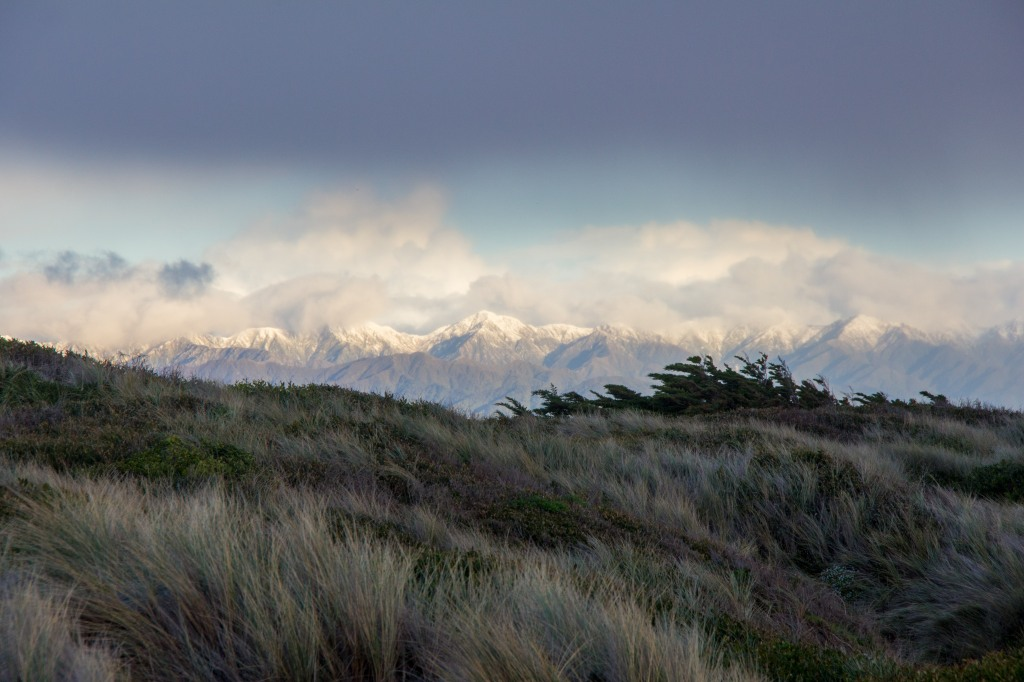 See those photos of the sea? I just simply turned around and photographed this. Those are the Tararua Ranges, they are the backdrop to my place. The wild Tasman Sea in front and the Epic mountains behind me. I like that.