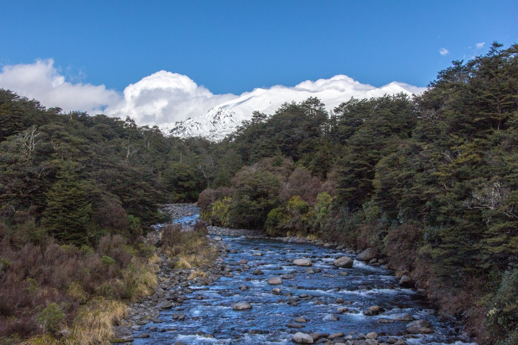 Looking up a Mountain Stream towards Mt Ruapehu. Near National Park