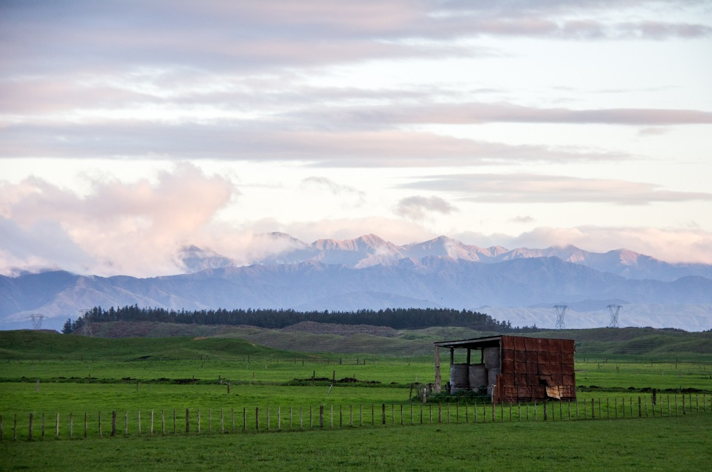 Manawatu, from the road, old hay barn. Tararua Ranges. nothing to see here...