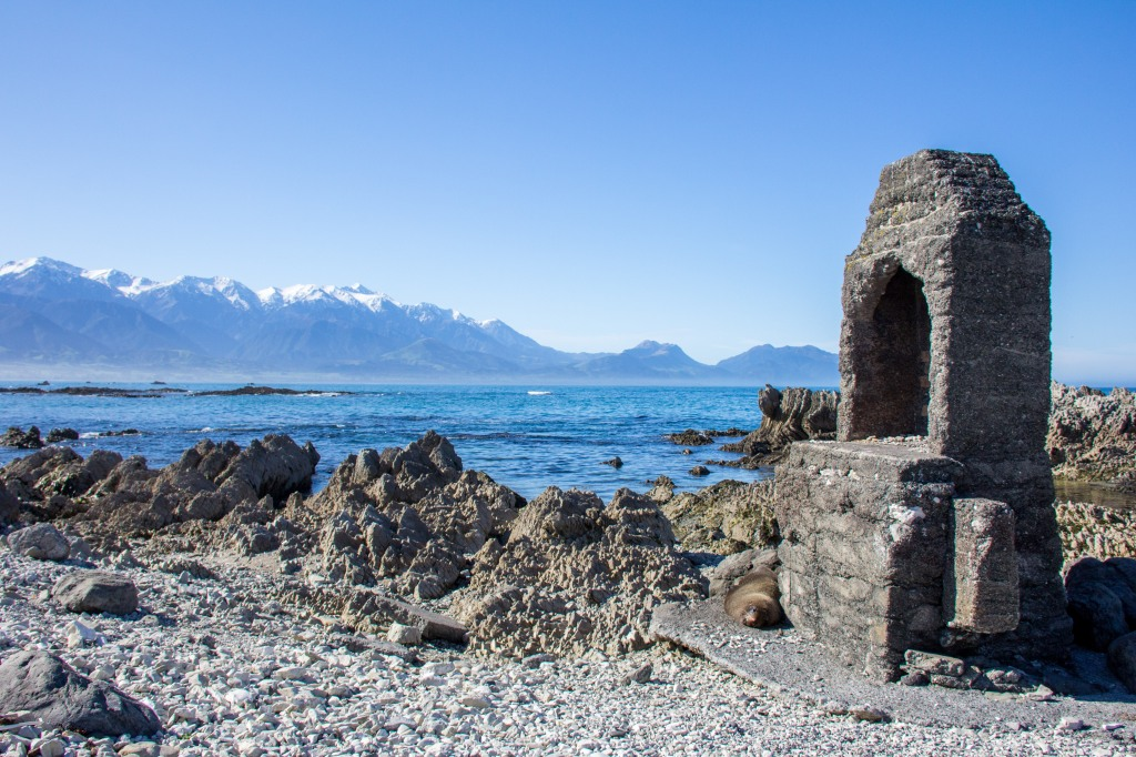 I could call this 'Chimney Seal. You may notice a loafing seal at the base of the old chimney. Looking across to the Kaikoura Ranges