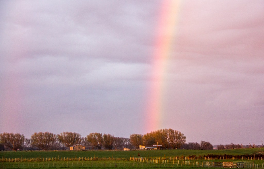 Rainbow, kicking off an early morning, inland.