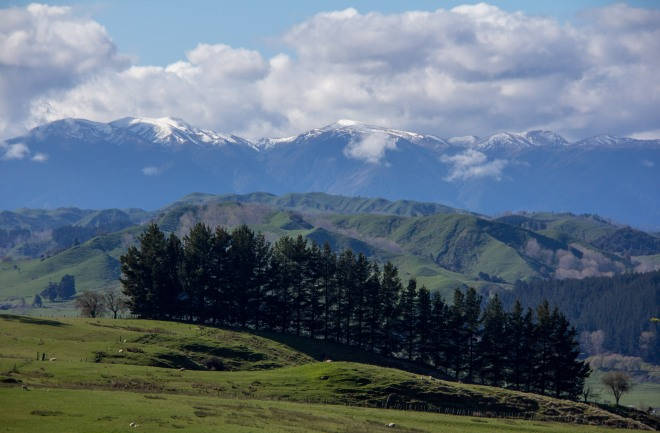 The Ruahine Ranges, on the other side of them is Hawkes Bay.