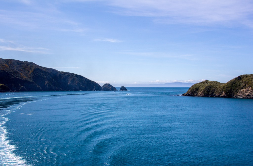 After a rough crossing of Cook Strait, turning into the Marlborough Sounds through the Tory Channel is like walking into a library off a busy street. A giant outdoor nature library on a sunny day sort of thing.