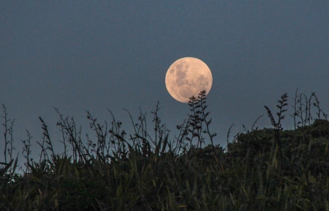 Full Moon at Muriwai Beach