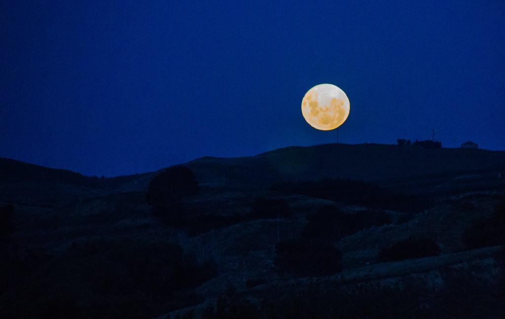 Not a blue moon. Early evening moon rising. Hunterville.