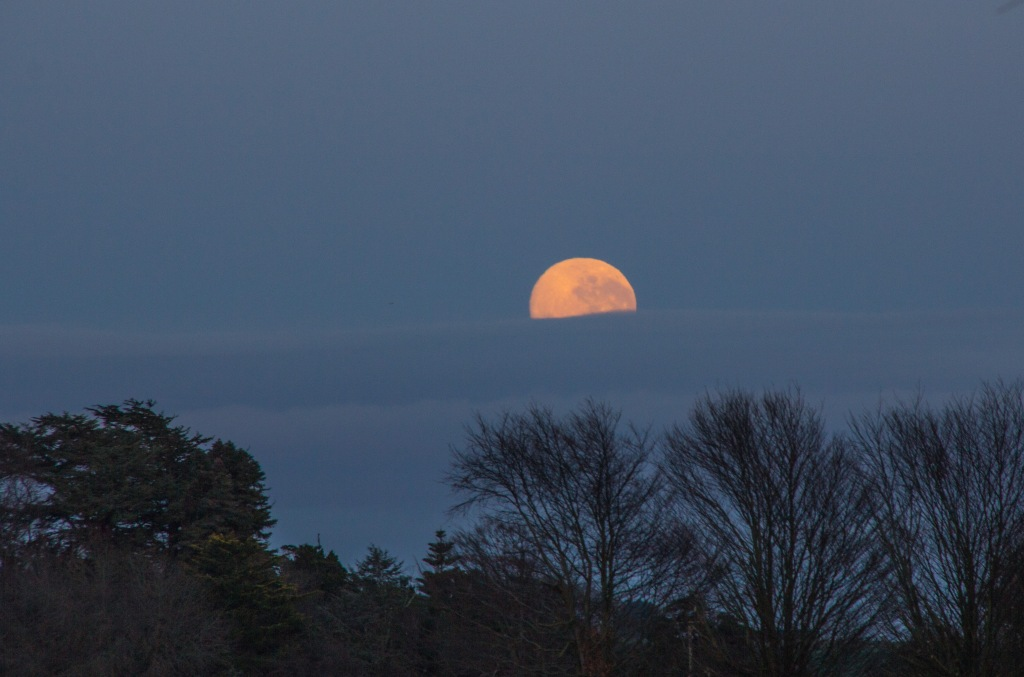 Moon sinking into the clouds, Rangitikei at dawn.