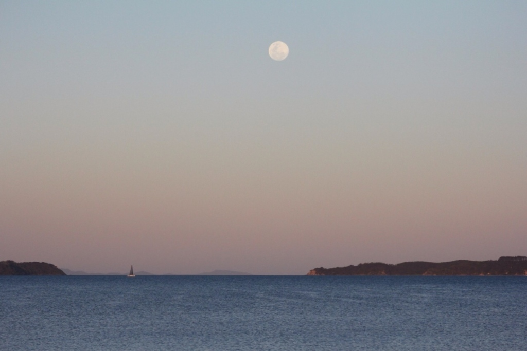 Yachting by moonlight. Kawau Bay at Dusk.