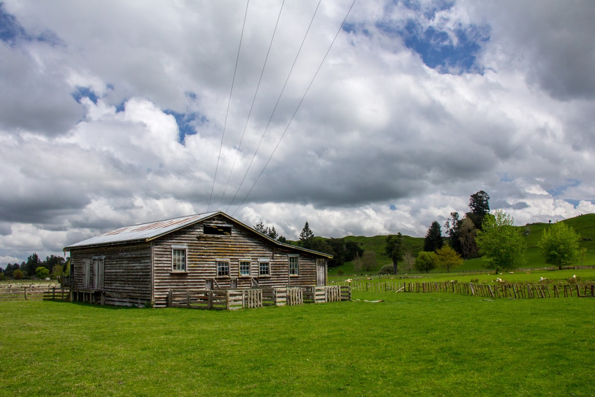 Rangiwhaia woolshed two