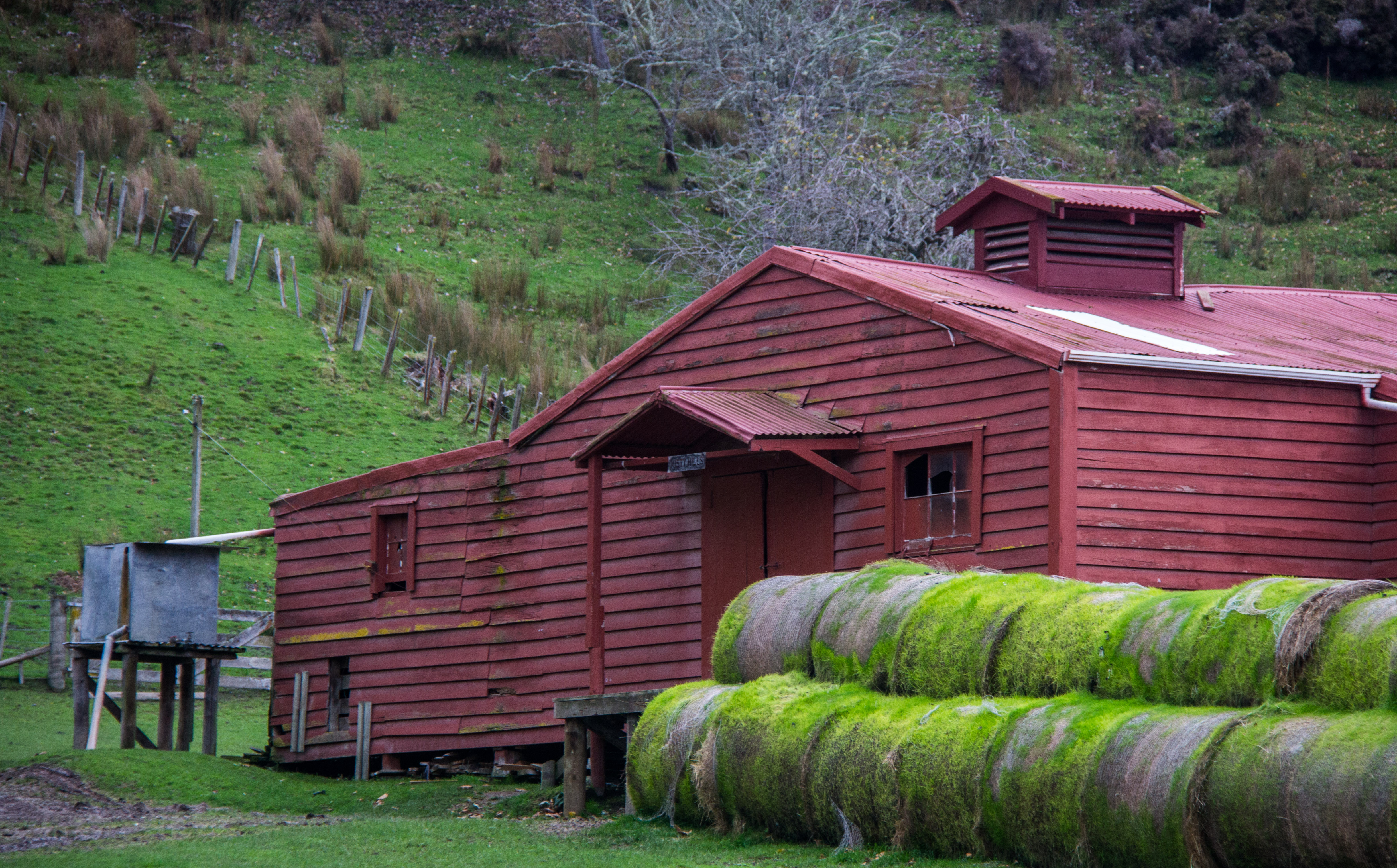Red Shed green haybales