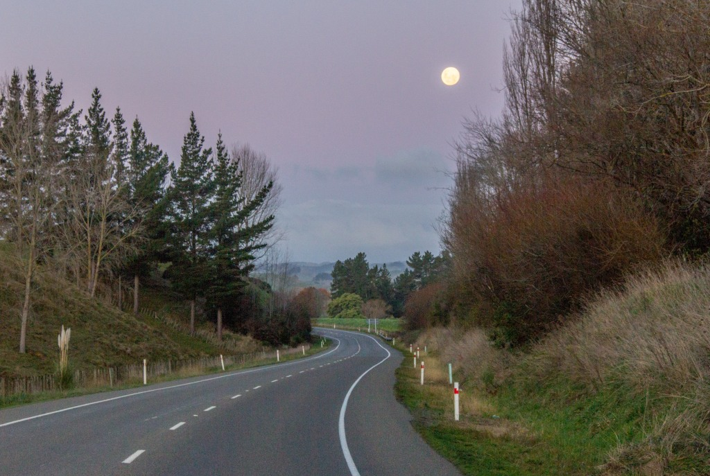 Moon rising over State Highway One. Near the Vinegar Hill SH54 turn off.