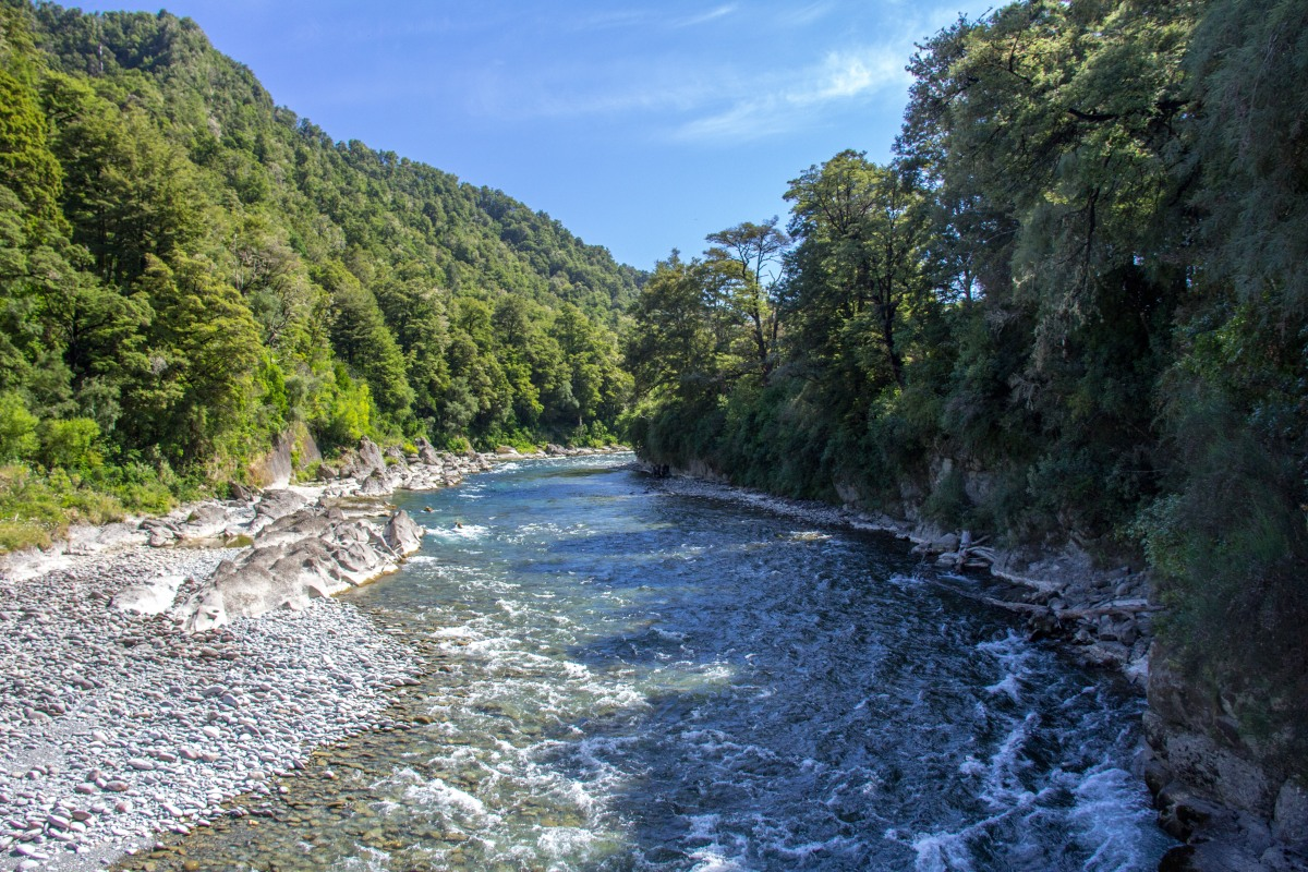 Buller River upstream