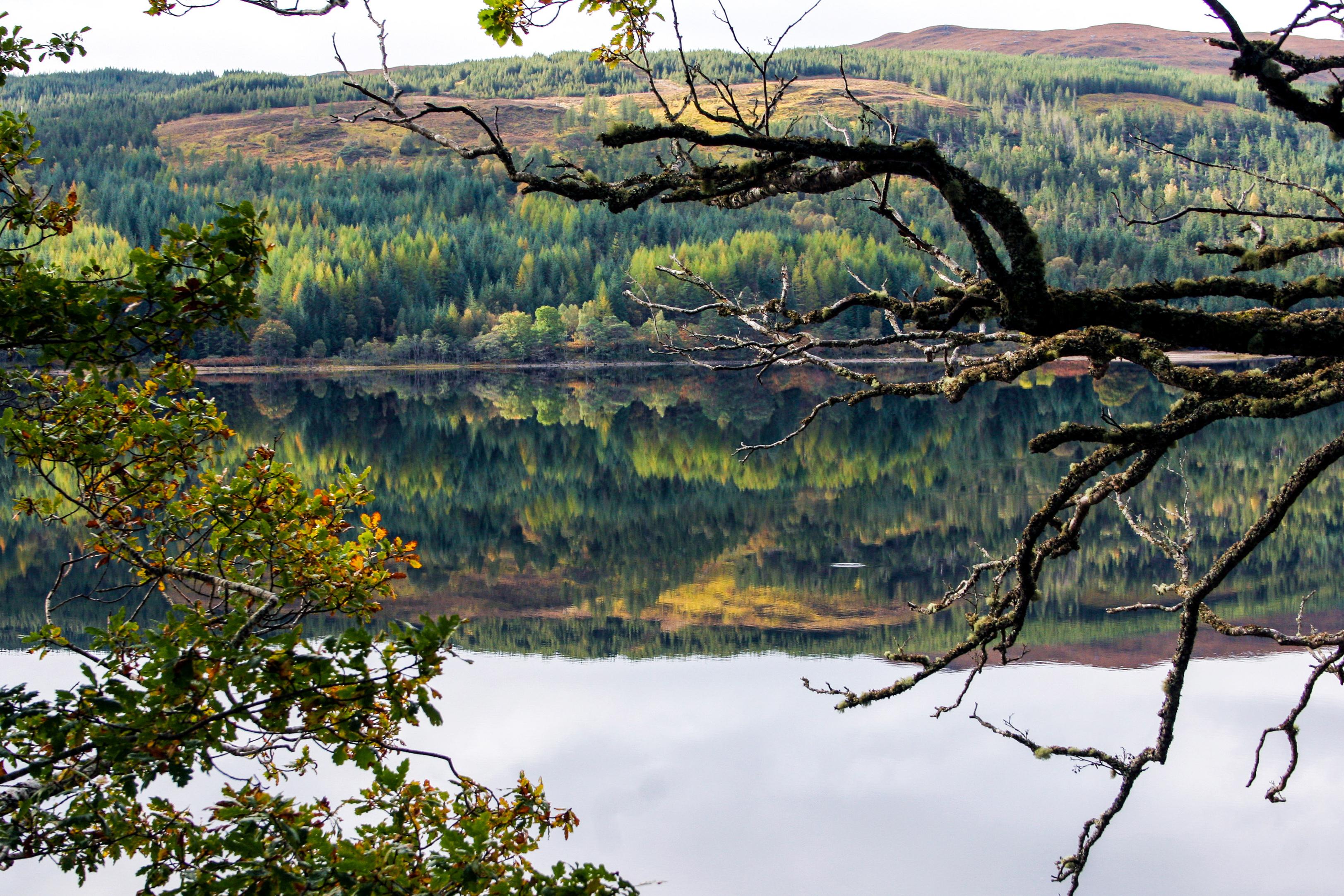 Scottish Loch