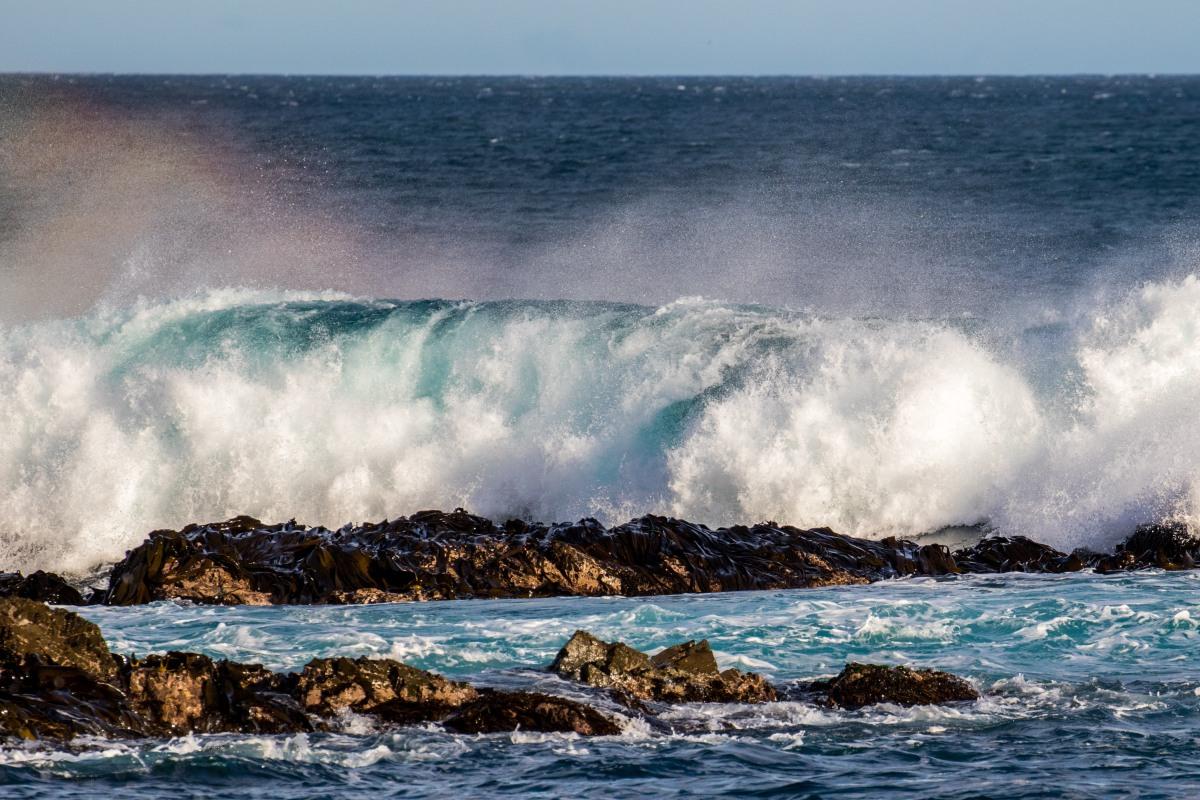 wave-colour