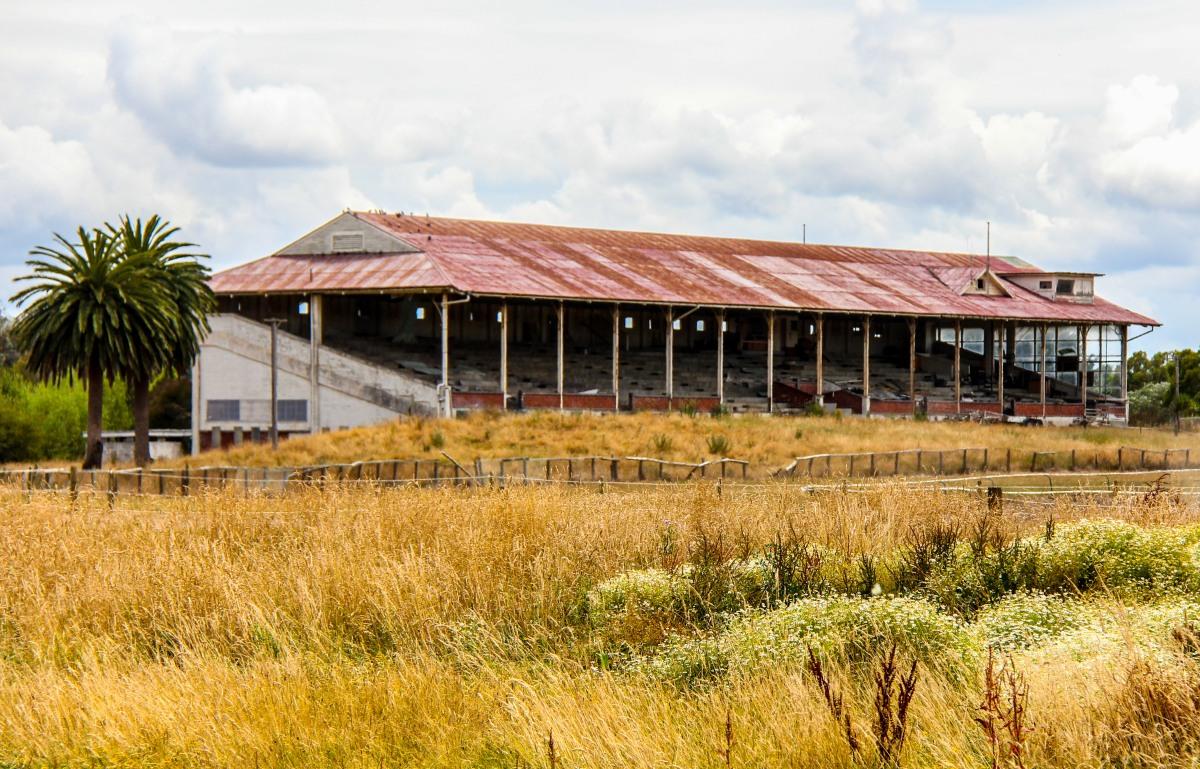 Marton Racecourse 2