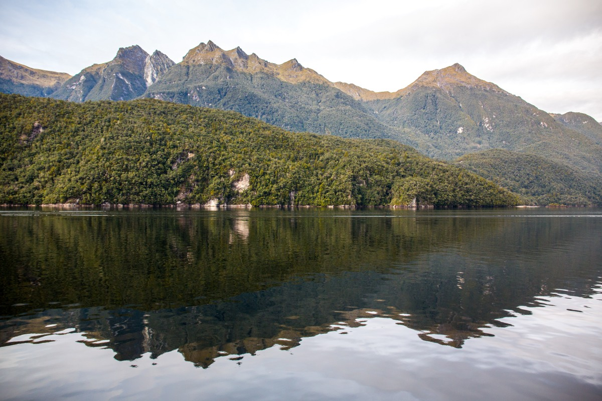 Lake Manapouri Reflections